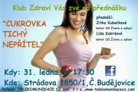 130125_cesbud_pl
