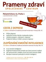 130403_praha1_melantrichova_pl