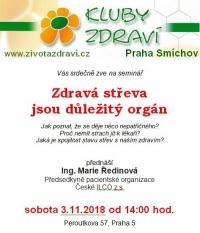 KZ20181103_streva