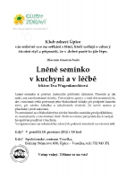121210_p_upice_prednaska