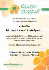 kz_rijen_2013_emocni_inteligence